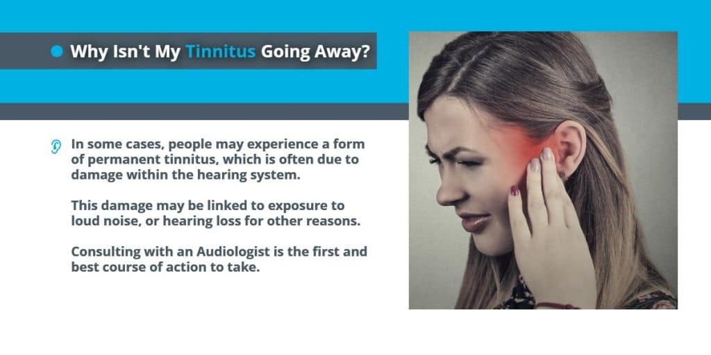 Why isn't my Tinnitus going away | Causes of Tinnitus | Echo Audiology